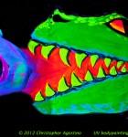 face_painting_uv_gatoreatingjose_1_horizontal_120526aa_agostinoarts