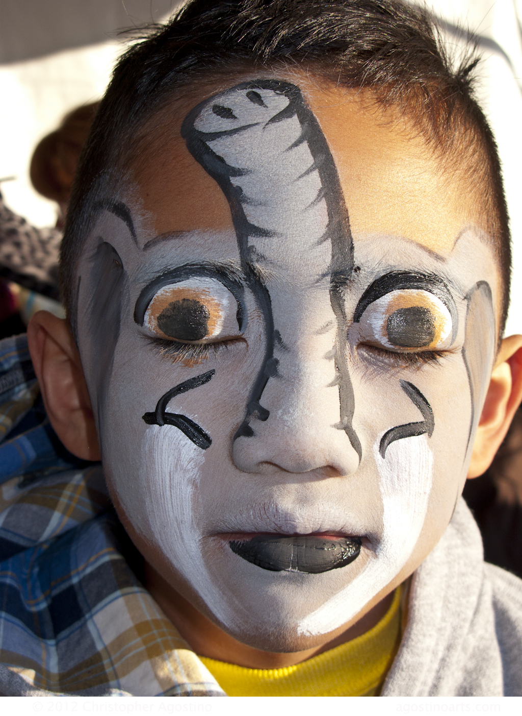 Zoo Animal Face Painting Designs - Home Decor